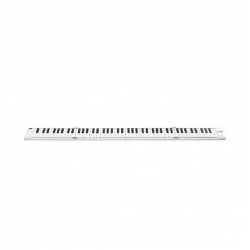 BLACKSTAR Carry On 88 Key Folding Piano & Midi Controller
