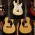 Most Affordable Fender Guitars 2020
