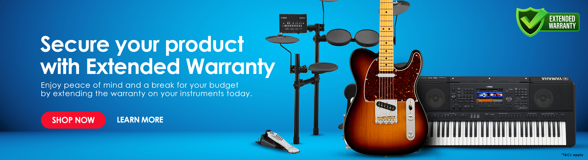 Extended Warranty for Musical Instruments