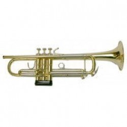 Bach VBS1 Vincent Bach Trumpet Only