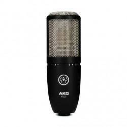 AKG P220 Professional Large-dual-diaphragm True-Condenser Microphone.
