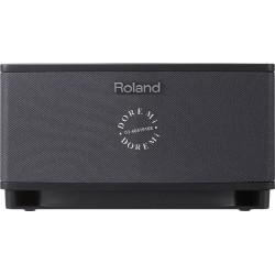 "Roland Cube Lite 3x3"" 10-watt Stereo Combo Amp"