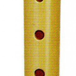Hohner B9516 Melody C Descant Recorder Flute